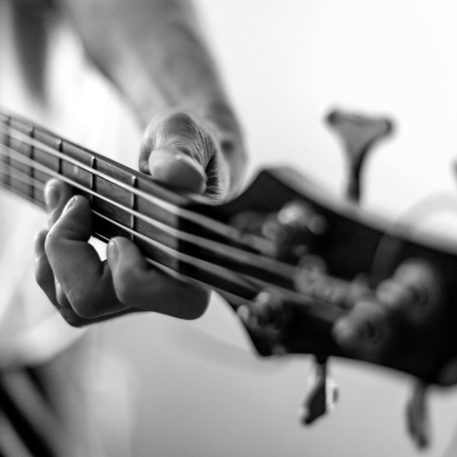 """Play that funky bass, boy!"" stock image"