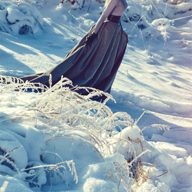 """""""The Snow Queen. Winter day."""" stock image"""