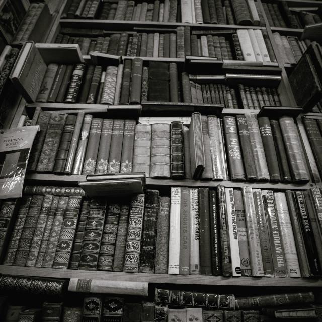 """Bookshelf"" stock image"