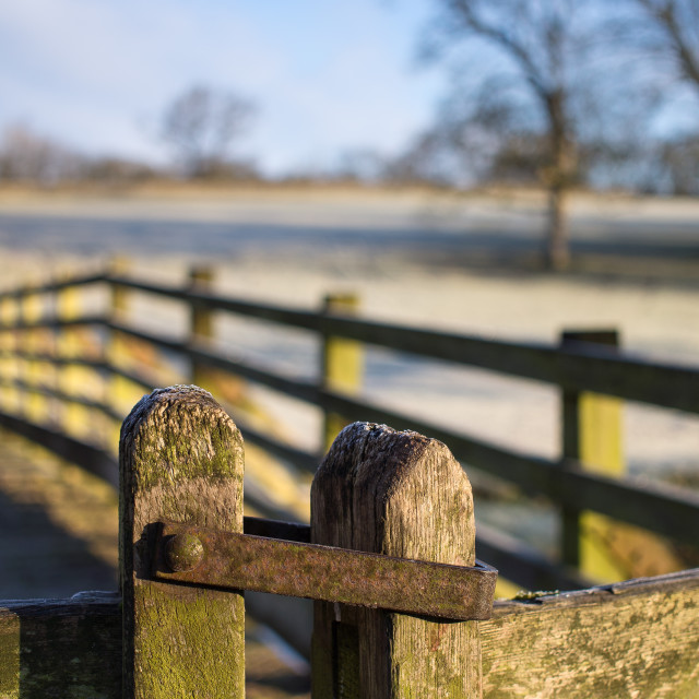 """Frosty gate"" stock image"