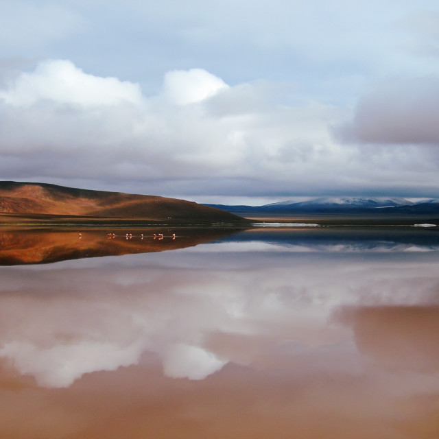 """Laguna Colorada"" stock image"