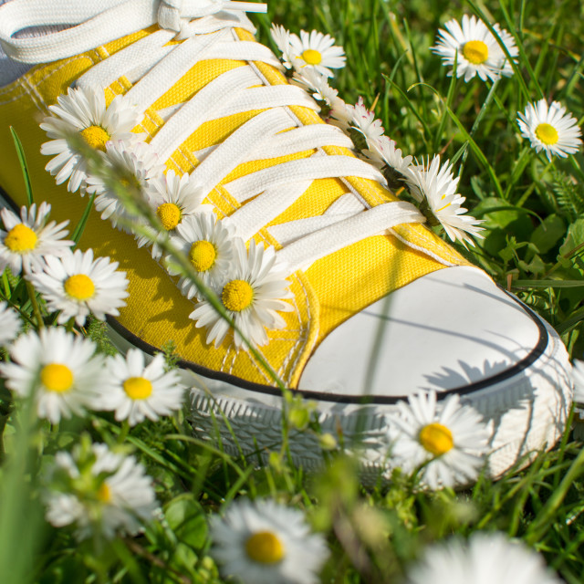 """Yellow sneakers decorated with daisies"" stock image"