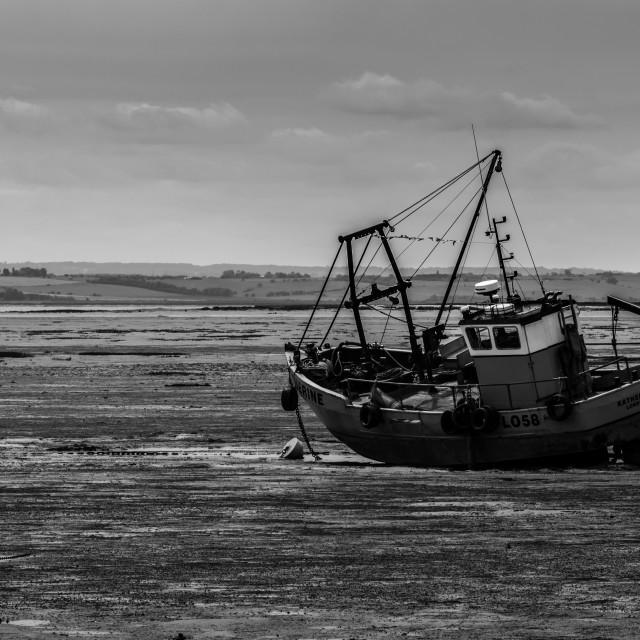 """""""Boat in estuary"""" stock image"""