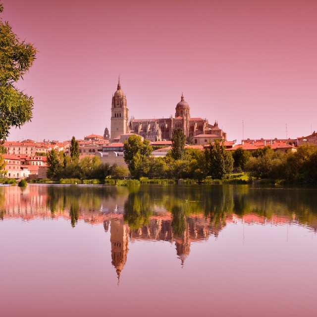 """Beautiful landscape with famous Salamanca cathedral in Spain"" stock image"