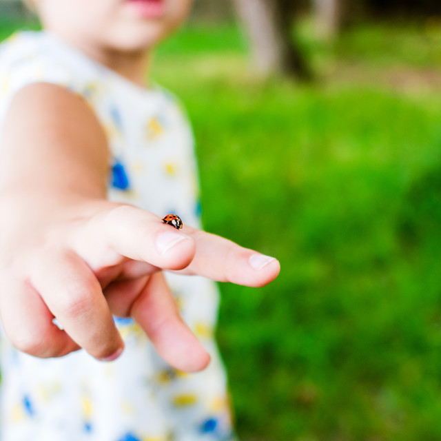 """""""lady bug and young boy"""" stock image"""