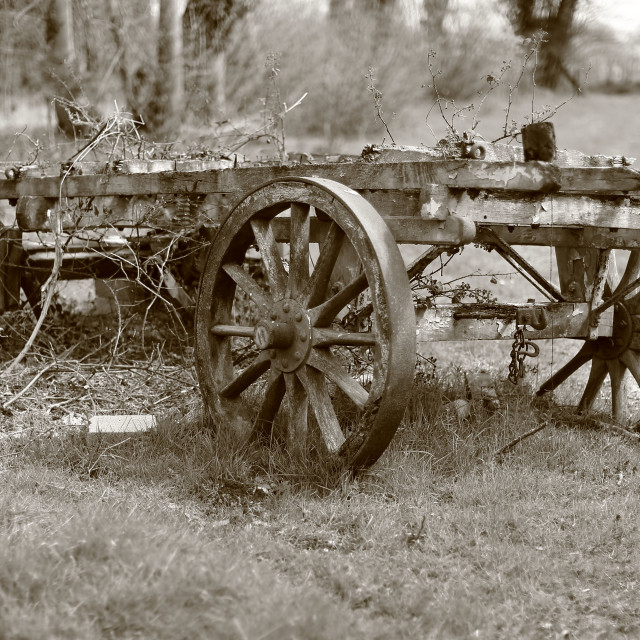 """Old Cart"" stock image"