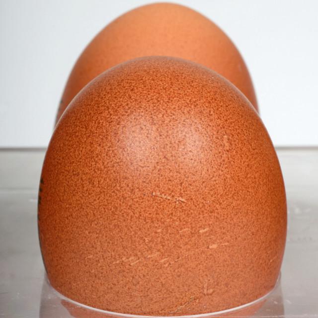 """Two free range eggs"" stock image"