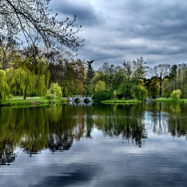 """""""La primavera in a park"""" stock image"""