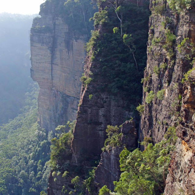 """Blue Mountains"" stock image"