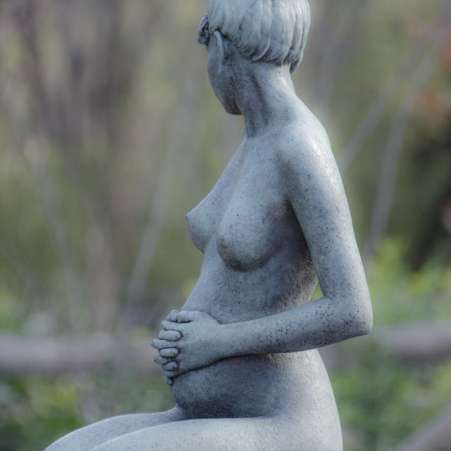 """Pregnant Woman"" stock image"