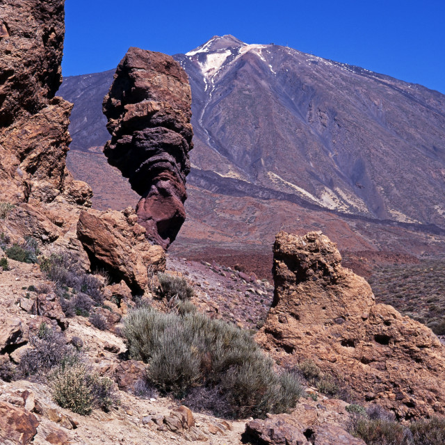"""""""Las Canadas National Park and Mount Teide on Tenerife"""" stock image"""