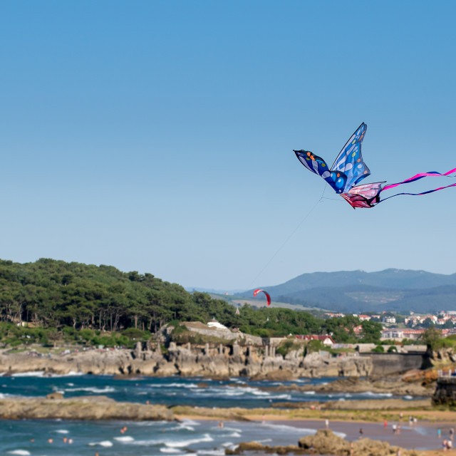 """""""Kite flying on the beach"""" stock image"""