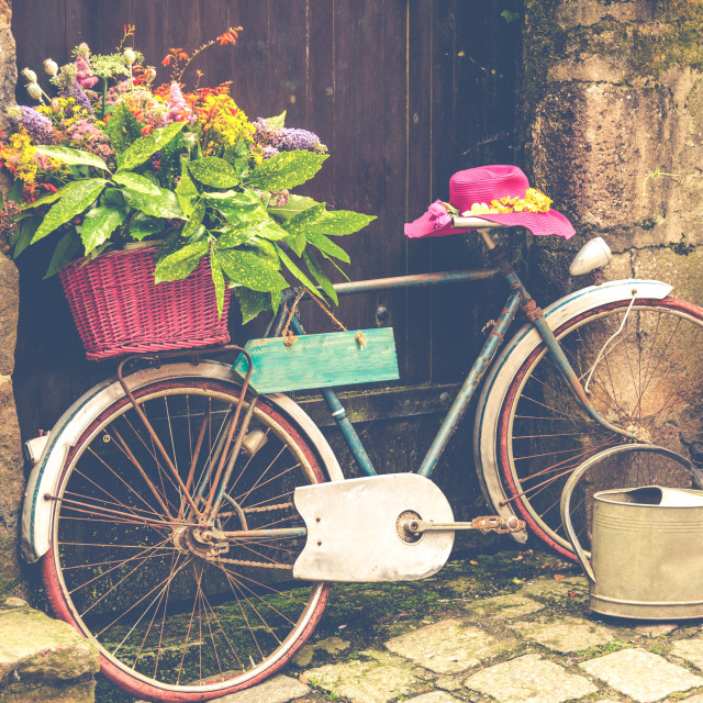 """Old bicycle with flowers"" stock image"