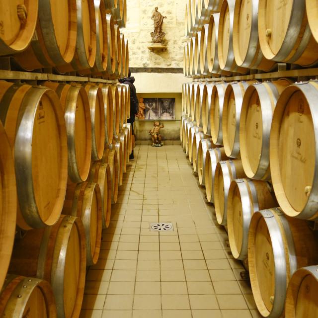 """""""Oak barrels in Winery, Chateau Carignan, Bordeaux."""" stock image"""
