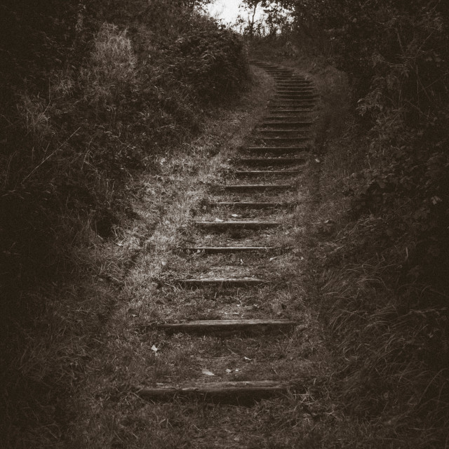 """""""Stairway to ..."""" stock image"""