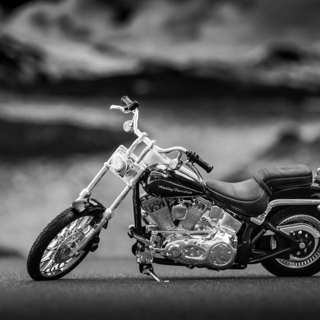"""Harley"" stock image"
