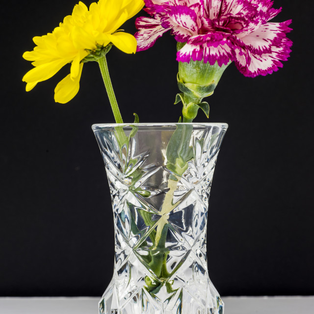 """Chrysanthemums and Carnation in a lead crysal vase."" stock image"