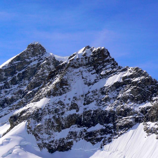 """""""Jungfrau"""" stock image"""