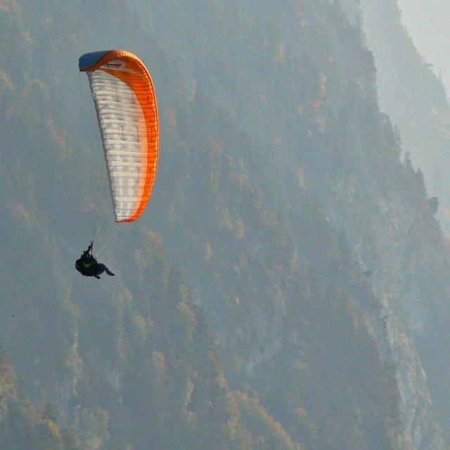 """Para gliders"" stock image"