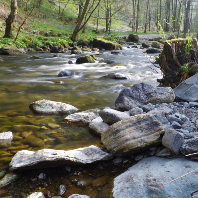 """River Rothay"" stock image"