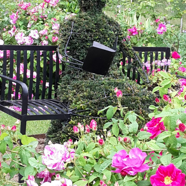 """Topiary"" stock image"