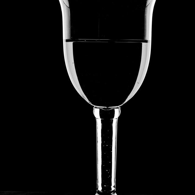"""Wine glass - in monochrome."" stock image"