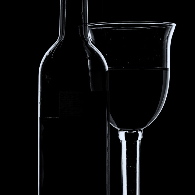 """""""Wine glass and bottle - mono with cool tones."""" stock image"""
