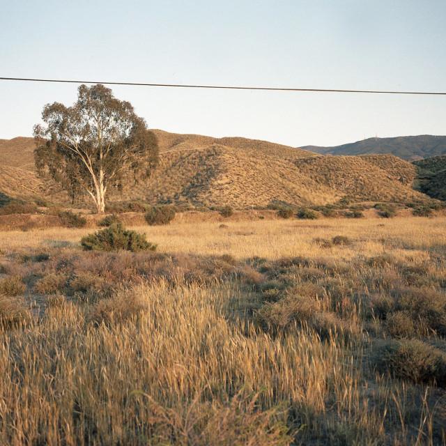 """Desert of Almeria"" stock image"
