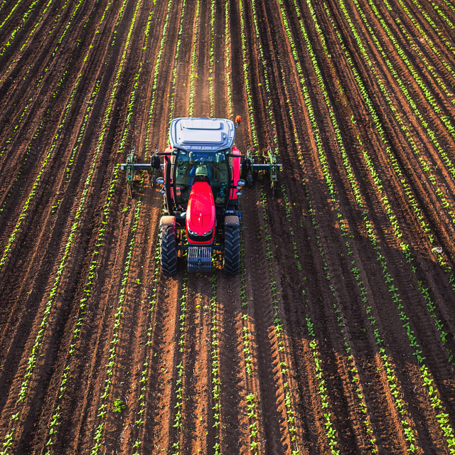 """Tractor cultivating field at spring"" stock image"
