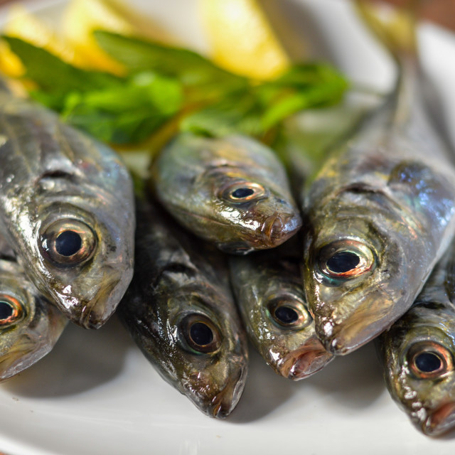 """Fresh scad fish from Greece with lemon and fresh herbs"" stock image"