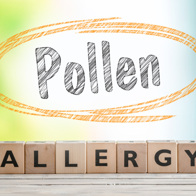 """""""Pollen allergy headline with a wooden sign"""" stock image"""