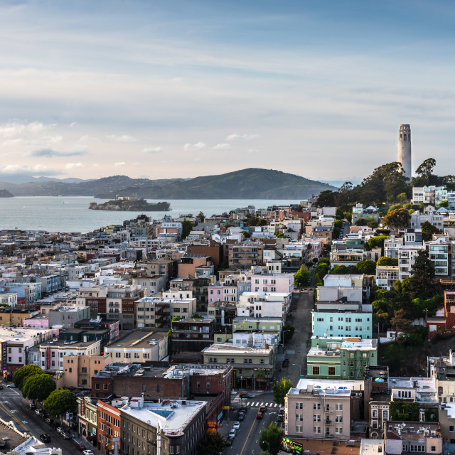"""""""San Francisco- Coit Tower on Telegraph Hill"""" stock image"""