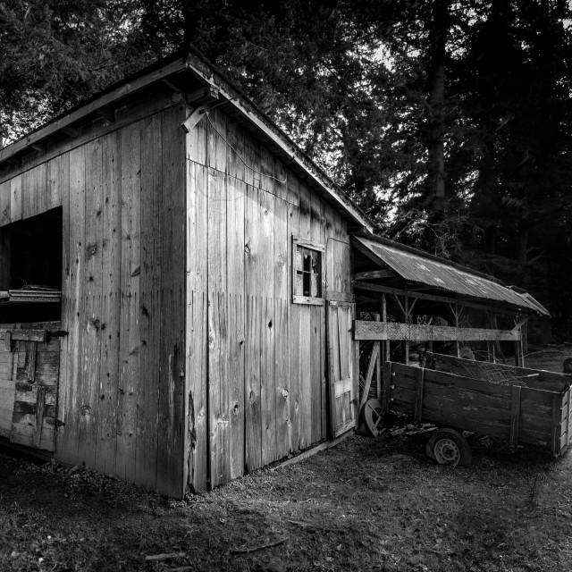 """""""Old Barn Landscape"""" stock image"""