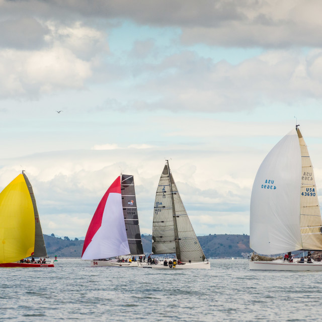 """Race Boats on San Francisco Bay"" stock image"