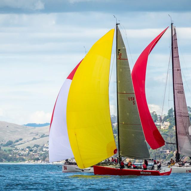 """Race Boats on San Francisco Bay"" stock image"