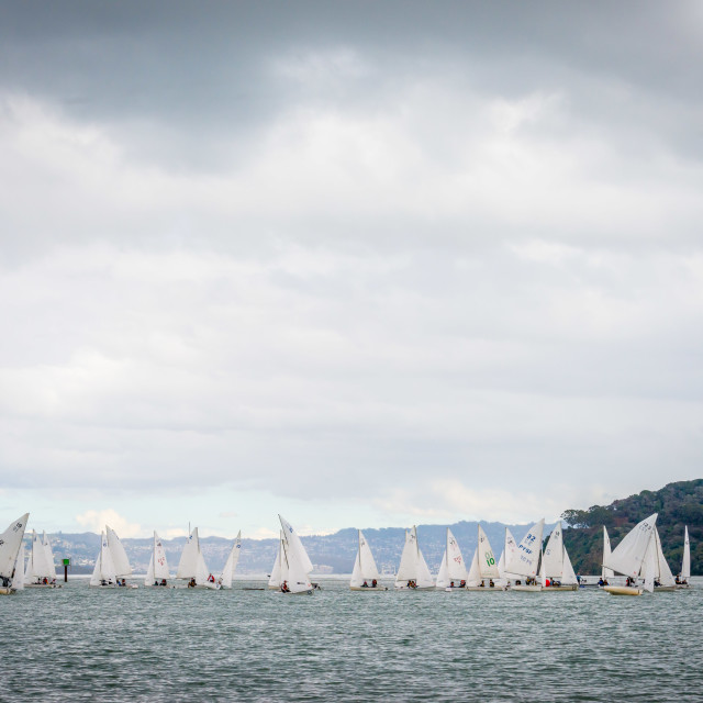 """Dinghie Racing, San Francisco Bay"" stock image"