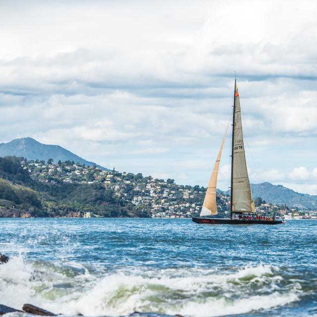 """USA 76 Sailing on San Francisco Bay#2"" stock image"