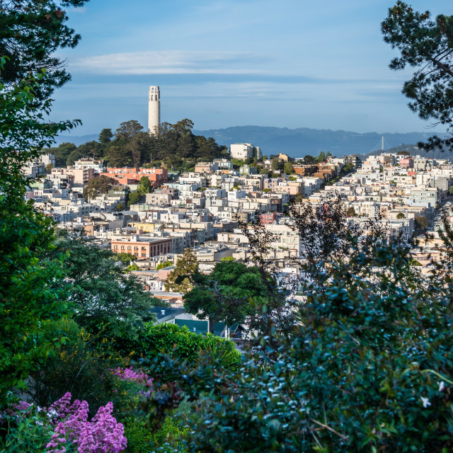 """Coit Tower - Telegraph Hill, San Francisco"" stock image"