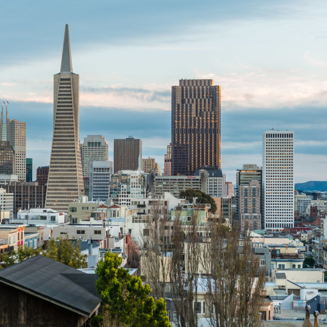 """Transamerica Pyramid, Financial District, San Francisco"" stock image"