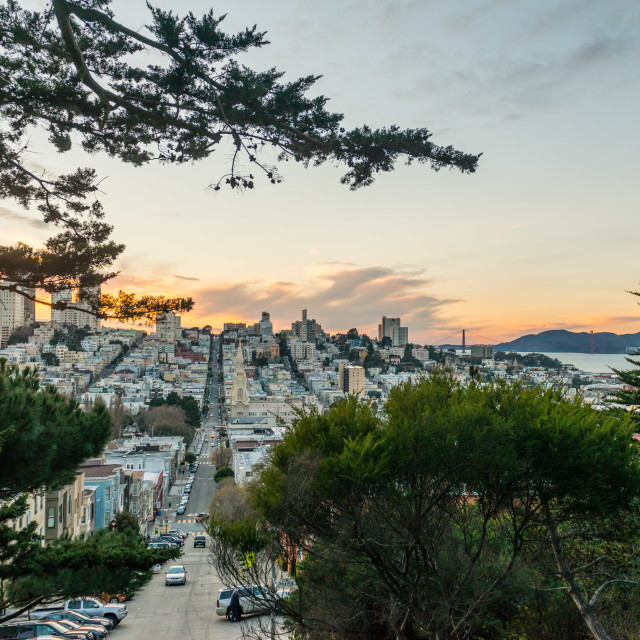 """Russian Hill Sunset San Francisco"" stock image"