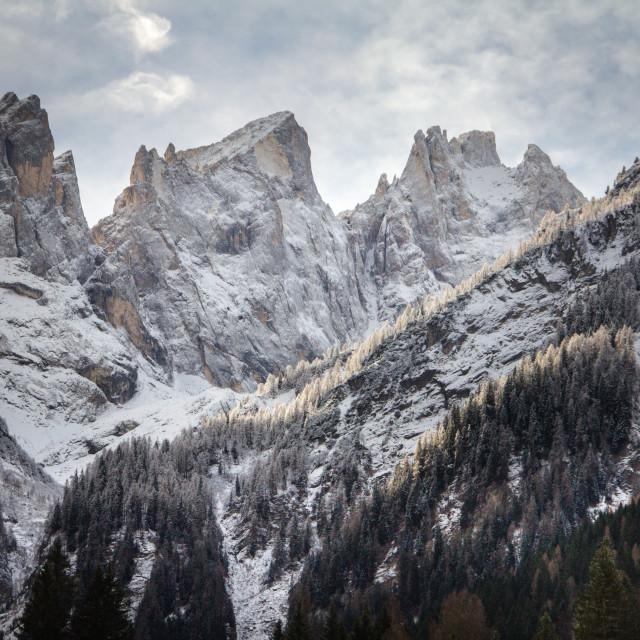 """""""Dolomites, Near Falcade Italy"""" stock image"""