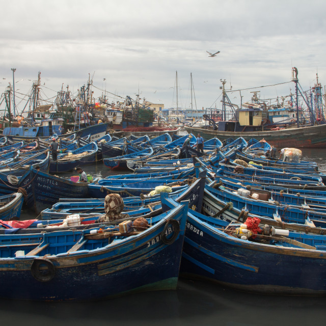 """Fishing boats, Essaouira, Morocco"" stock image"