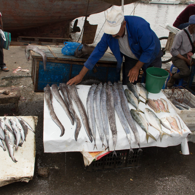 """Fisherman selling eel, port of Essaouira, Morocco"" stock image"