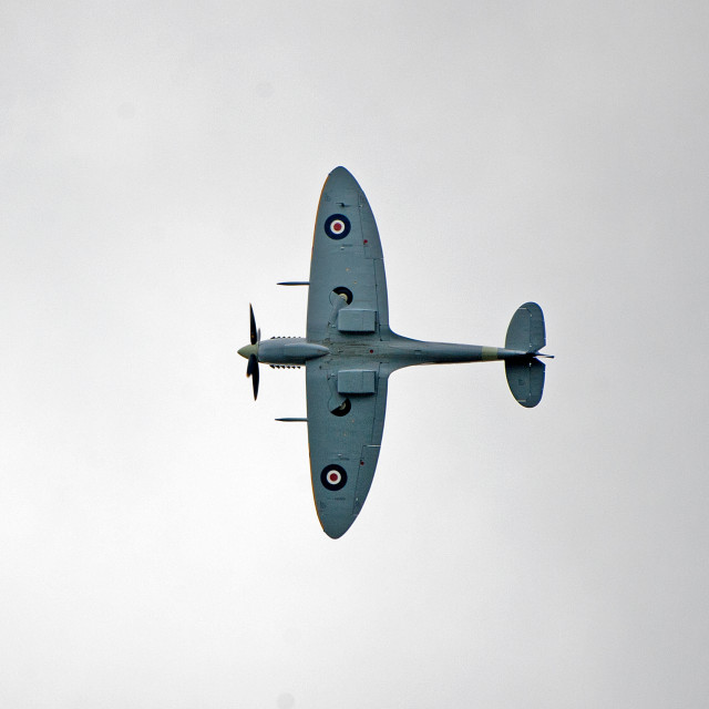 """Spitfire performing turn"" stock image"