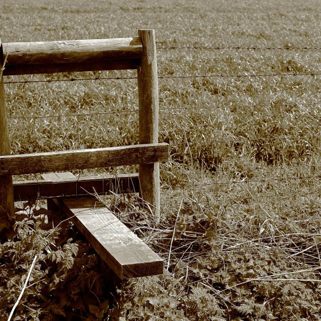 """Stile in a field"" stock image"