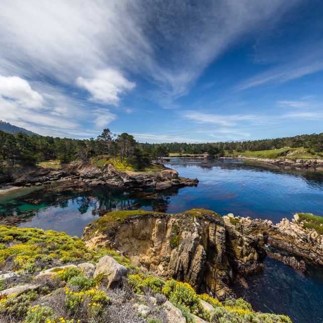 """Point Lobos State Park"" stock image"