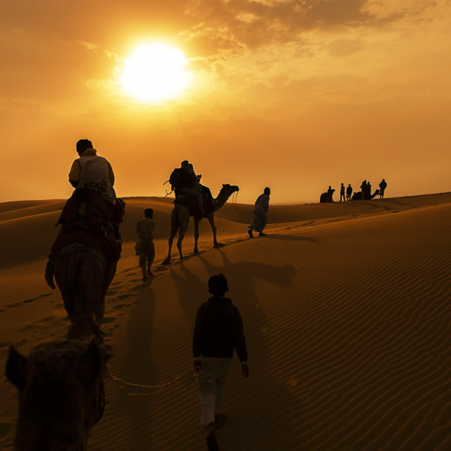 """Camel Rides"" stock image"