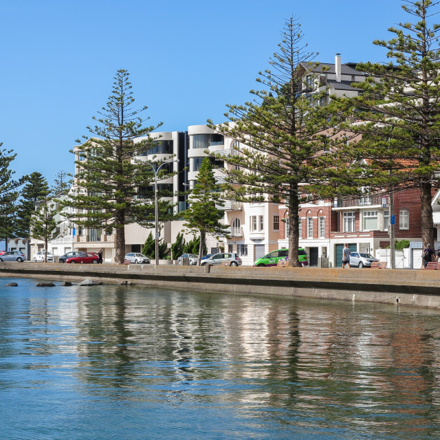 """""""Oriental Bay reflections"""" stock image"""