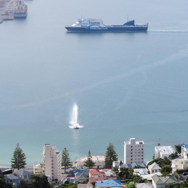 """Wellington harbour"" stock image"