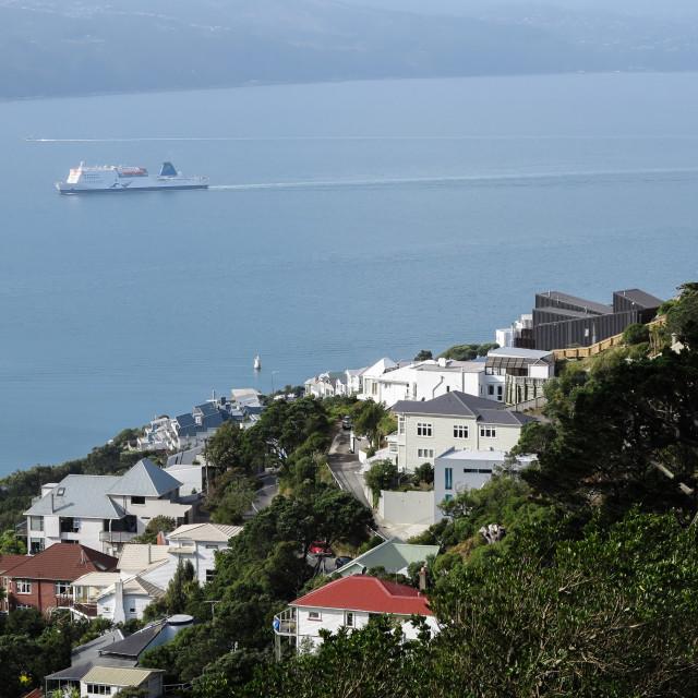 """Wellington harbour, N.Z."" stock image"